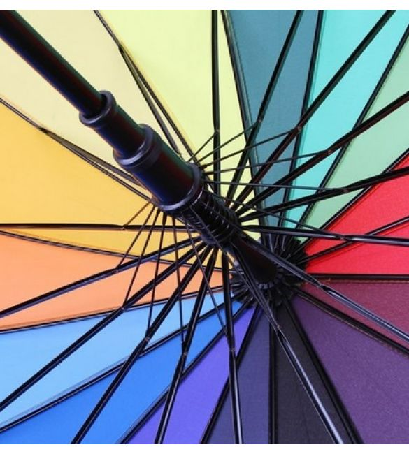 спицы от зонтика фото